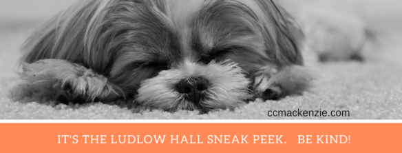 IT'S THE LUDLOW HALL SNEAK PEEK. BE KIND !